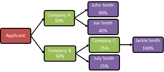 Figure 1: Example of a corporate ownership structure